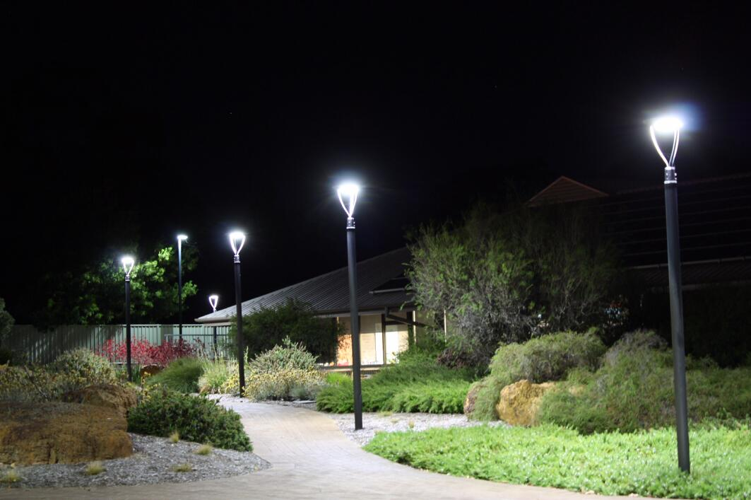 Community Street Light Eag Led